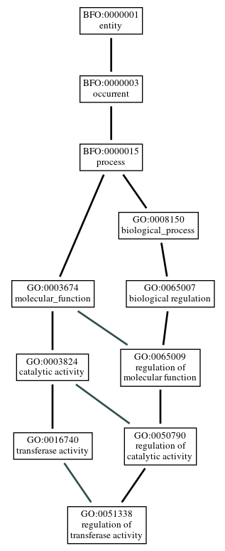 Graph of GO:0051338