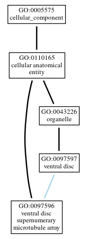 Graph of GO:0097596