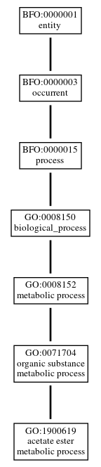 Graph of GO:1900619