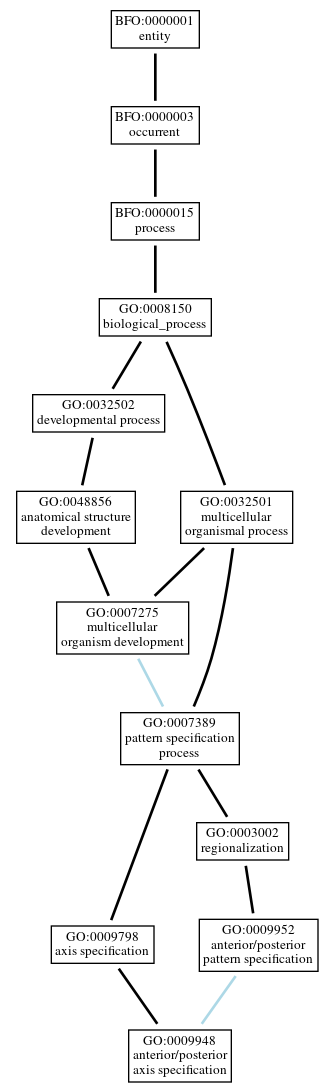 Graph of GO:0009948