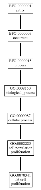 Graph of GO:0070341