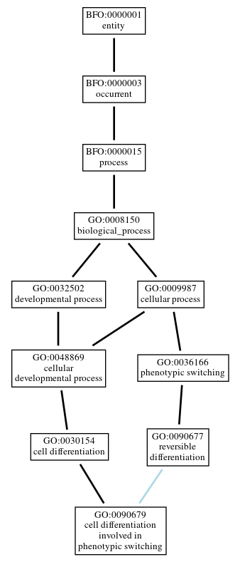 Graph of GO:0090679
