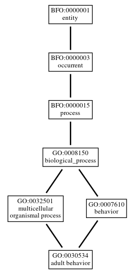 Graph of GO:0030534