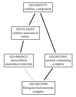 Graph of GO:0033588