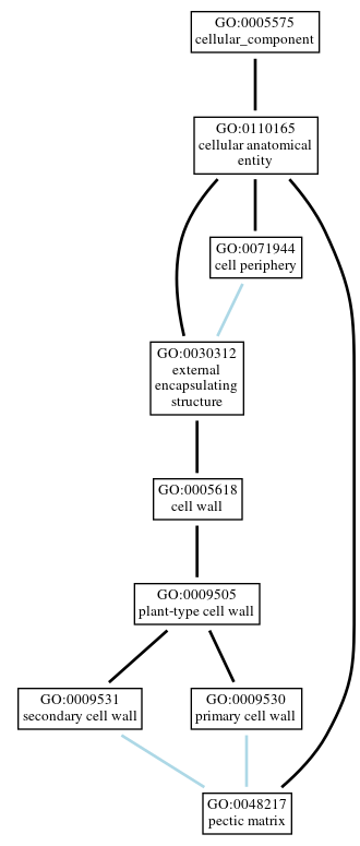 Graph of GO:0048217