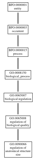Graph of GO:0090066